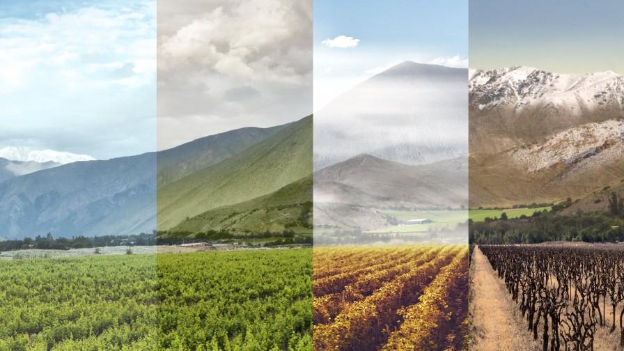 Las cuatro estaciones de Elqui
