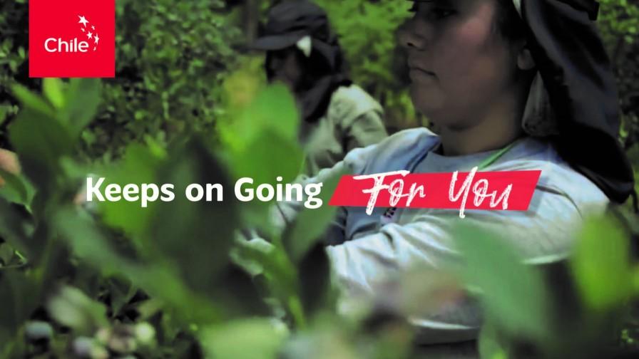 """Campaña """"Chile Keeps On Going for You"""", buscará reforzar el compromiso internacional con las exportaciones"""