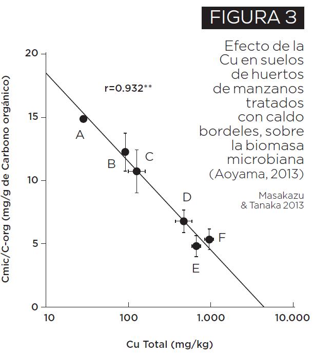 Toxicidad de cobre en el suelo: consecuencias del uso indiscriminado en sistemas productivos
