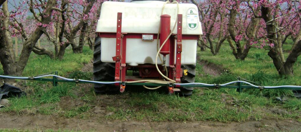 Aspectos a considerar para combatir las malezas en invierno en huertos frutales