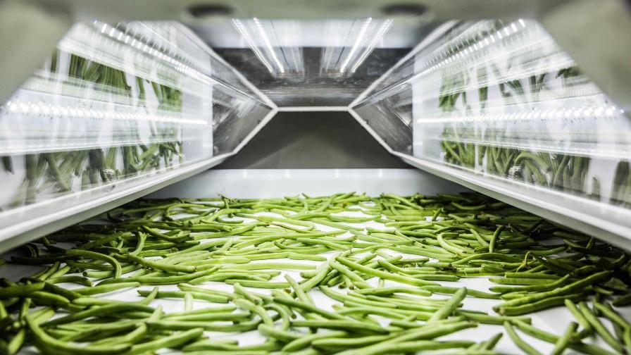 Tomra Food ofrece soluciones para apoyar a empresas procesadoras de verduras durante la crisis del Covid-19