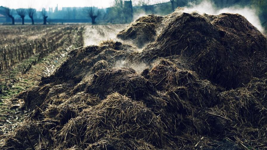 Economía circular: cada vez más presente en el sector agrícola