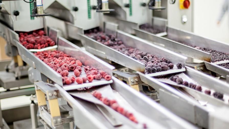 El impulso de las atmósferas modificadas para la conservación y exportación de alimentos