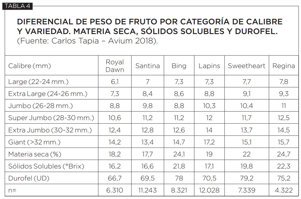 Realidad, propuestas y consideraciones para el futuro de la producción de cereza en Chile
