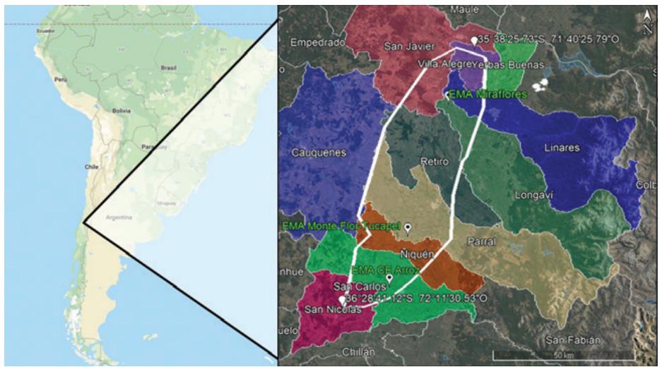 Presente y perspectivas futuras del cultivo del arroz en Chile