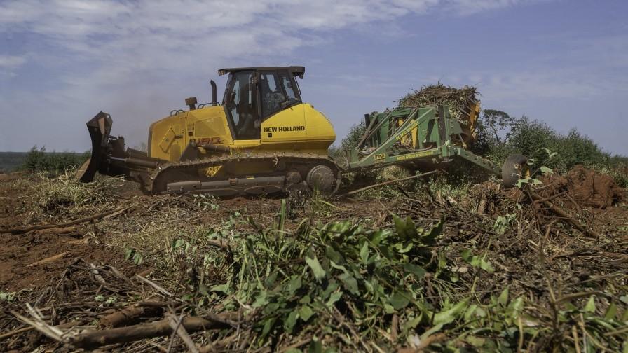 Bulldozer New Holland Construction D180C una solución para la gestión de residuos