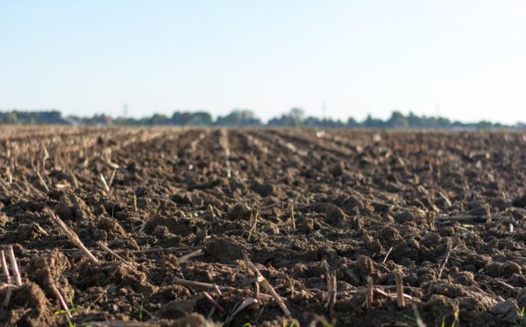 Nuestra actitud hacia el suelo juega un rol crucial para su uso sostenible