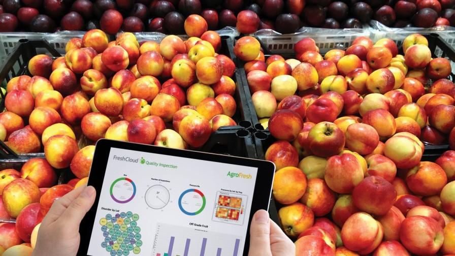 Montague, productor de frutas líder en Australia utilizará innovación de AgroFresh