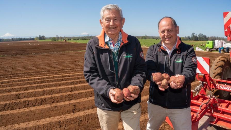 Andrés Vargas Teuber: tecnología y sustentabilidad en el cultivo de papas