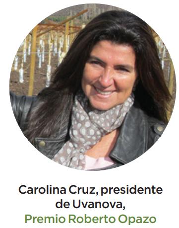 Colegio de Ingenieros Agrónomos de Chile entrega reconocimientos a profesionales destacados
