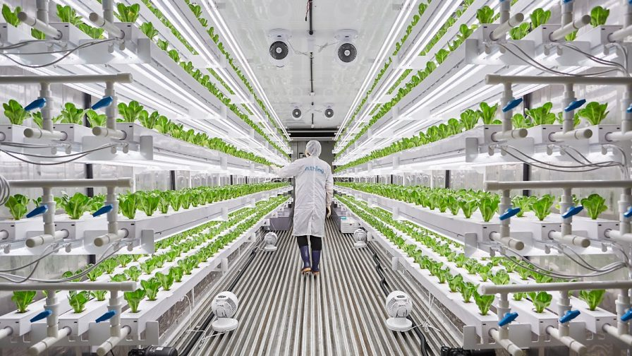 A la vanguardia: 5 innovaciones del agro premiadas en la feria CES 2020