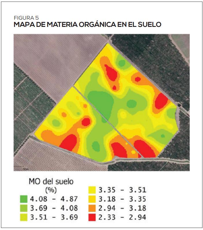 Radiografía del carbono: fracciones de C del suelo y su evaluación