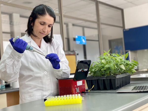 Investigadora chilena desarrolló método rápido para identificación genética varietal en frutales