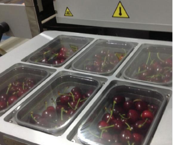 Consideraciones para el uso de  atmósferas modificadas en postcosecha de cerezas