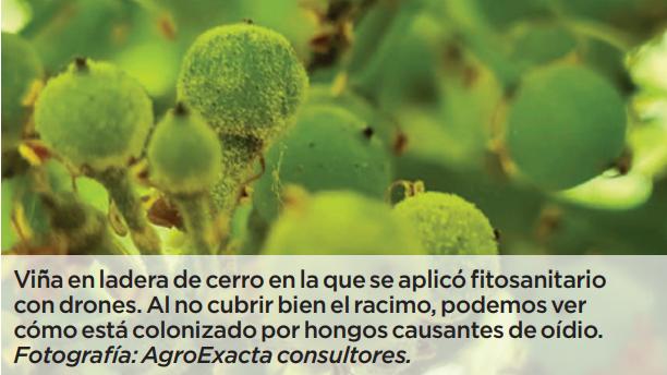 Drones: consideraciones sobre su uso en la aplicación de fitosanitarios