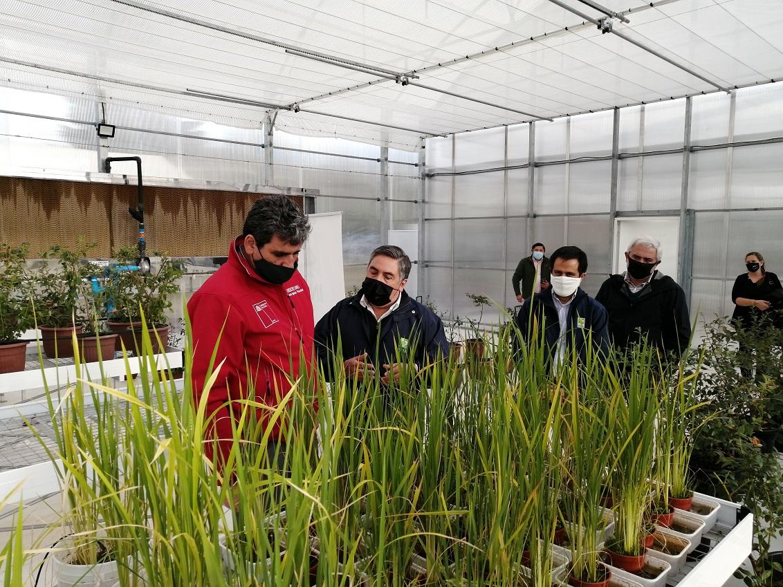Primera cámara de simulación climática para la agricultura del país