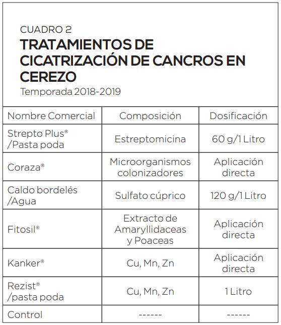 Cáncer bacterial del cerezo: opciones de manejo de cancros