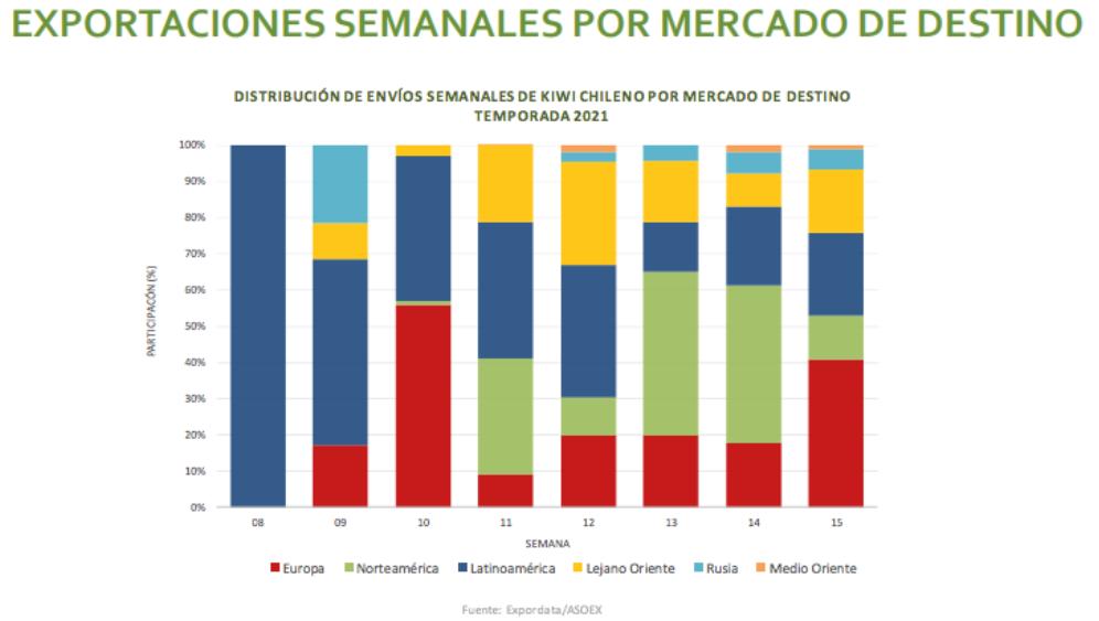 Avance de temporada: crece 10% exportaciones de kiwis chilenos