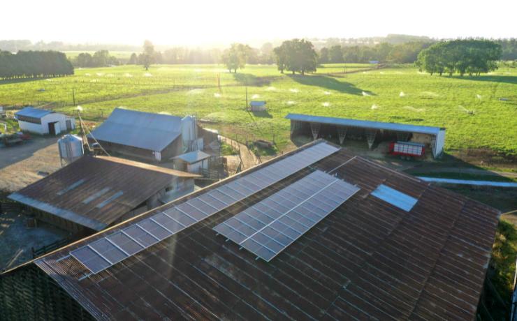 El salto a la energía solar del sector agroindustrial