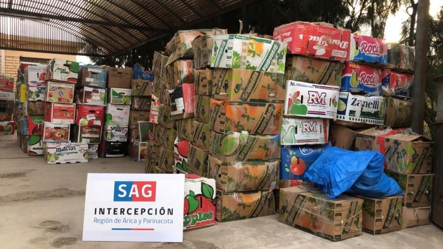 SAG intercepta más de 10 toneladas de productos hortofrutícolas que ingresaban clandestinamente al país