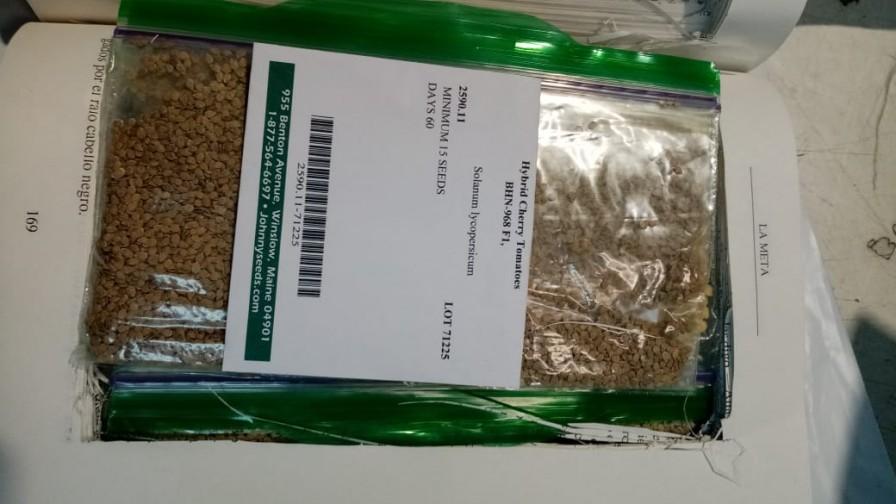 SAG intercepta semillas que venían ocultas en un libro