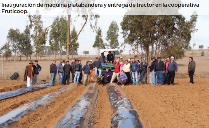 Cooperativismo: herramienta para enfrentar desafíos productivos y comerciales en el país