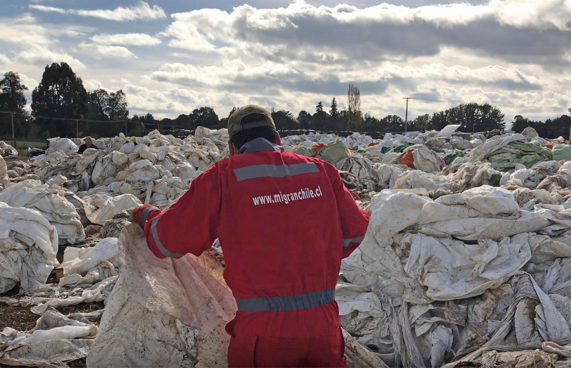 DercoMaq se compromete con el reciclaje de desechos agrícolas y crea alianza con Mi Gran Chile