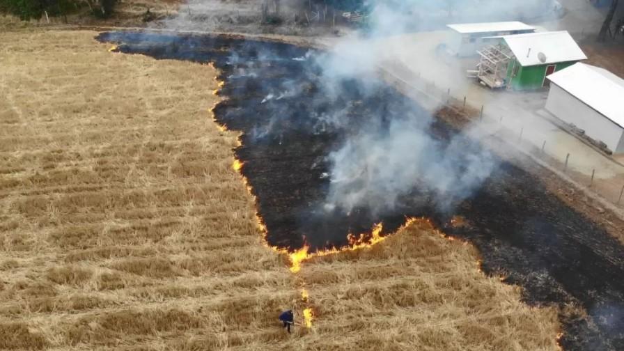 Problemas de la quema de rastrojos y alternativas posibles
