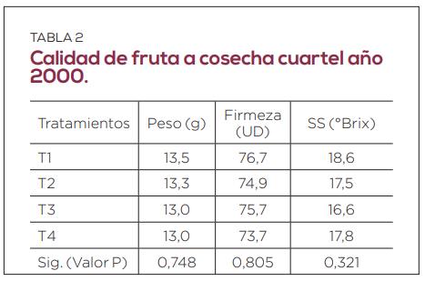 ¿Influye la edad de los centros frutales en la productividad y calidad de las cerezas?
