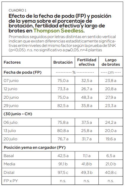 Aplicación de cianamida hidrogenada en uva de mesa frente al déficit de mano de obra