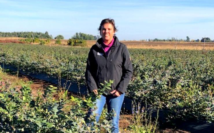 Más de mil 200 hectáreas que están en manos de mujeres podrían incorporarse al rubro frutícola en La Araucanía