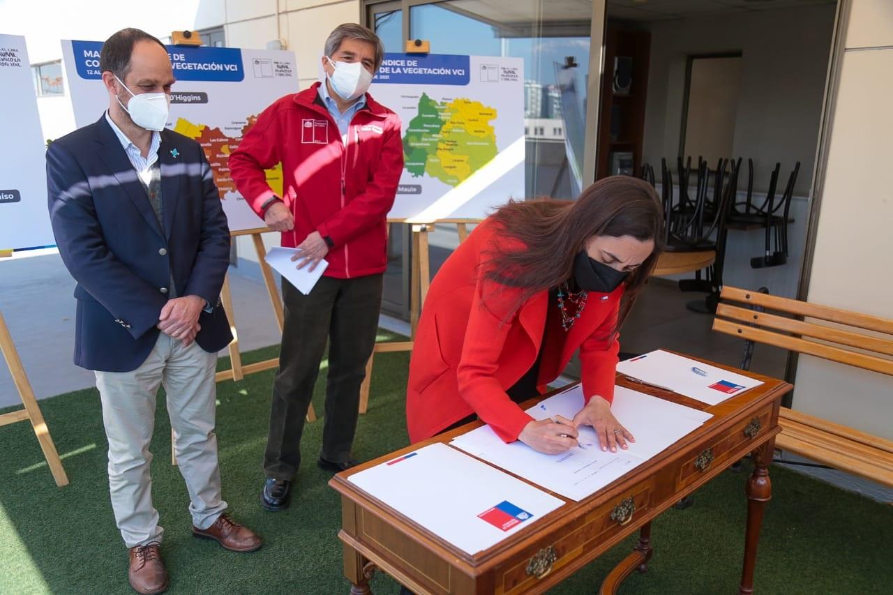 Decretan emergencia agrícola en regiones de Coquimbo, Valparaíso, O'Higgins y Maule
