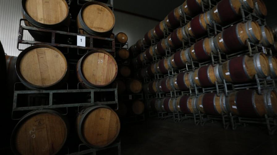 Producción de vinos 2021 subió 29,9%