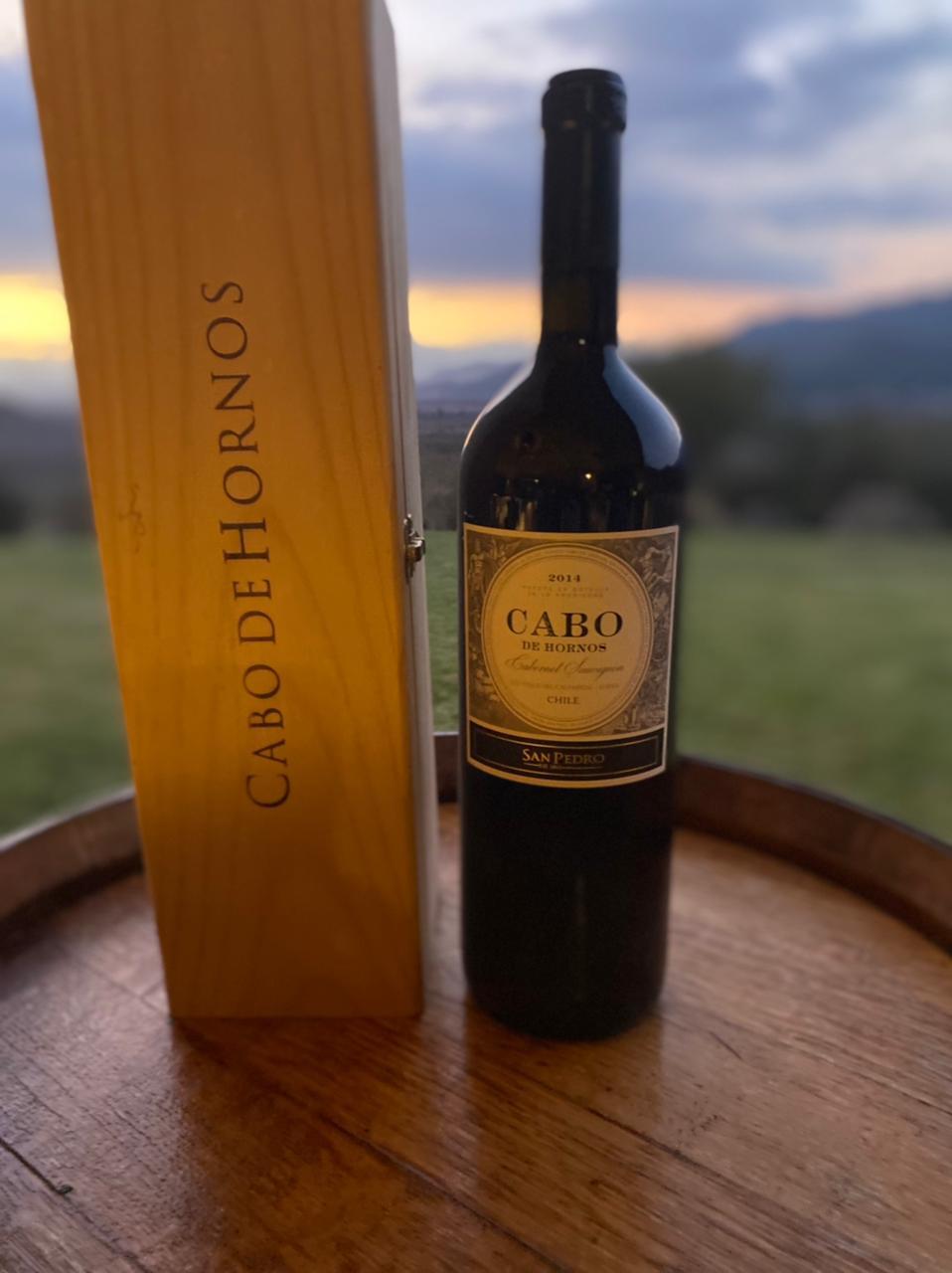 Tercera cata vertical de vinos íconos chilenos